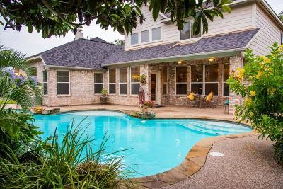Sugar Land Single Family Home For Sale: 3914 Lakeridge Canyon Drive
