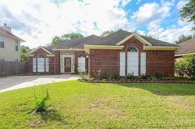 Single Family Home For Sale: 6127 Cape Hatteras Drive