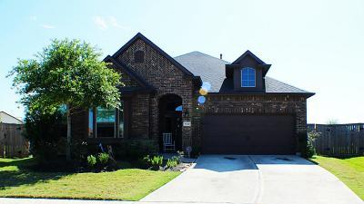 Fulshear Single Family Home For Sale: 5538 Little Creek