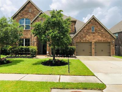 Shadow Creek Ranch Single Family Home For Sale: 3024 Sunrise Run Lane