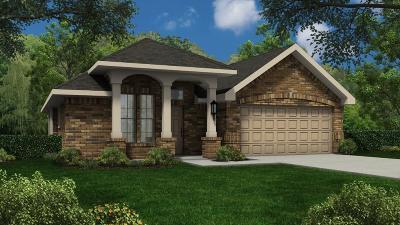 Rosenberg Single Family Home For Sale: 7715 Adobe Canyon Lane