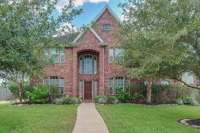 Friendswood Single Family Home For Sale: 705 Falcon Lake Drive