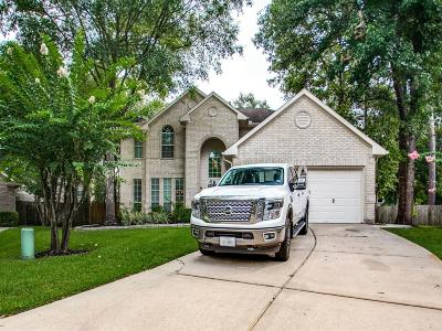 Conroe Single Family Home For Sale: 34 Terrell Trail Court