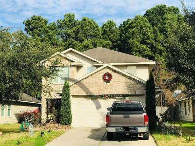 Houston Single Family Home For Sale: 1003 Sawgrass Ridge Lane