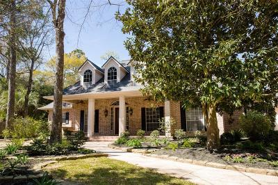 The Woodlands Single Family Home For Sale: 18 Treevine Court