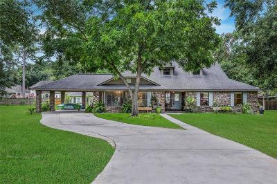 Willis Single Family Home For Sale: 14743 Lepus Drive