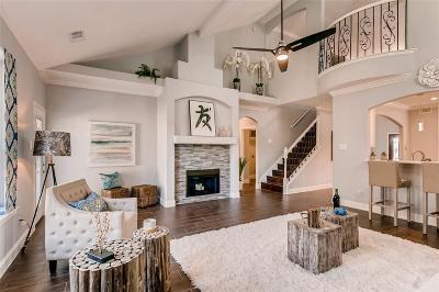 Katy Single Family Home For Sale: 19930 Black Canyon Drive