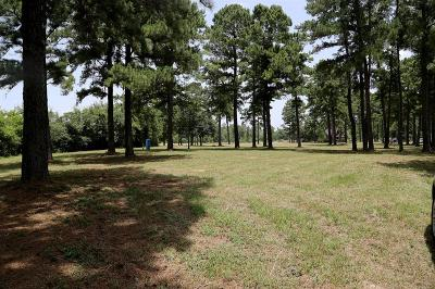 Tomball Residential Lots & Land For Sale: 517 E Hufsmith Road