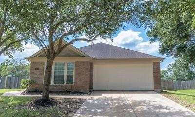 Rosharon Single Family Home For Sale: 14314 Rolling Hills Lane