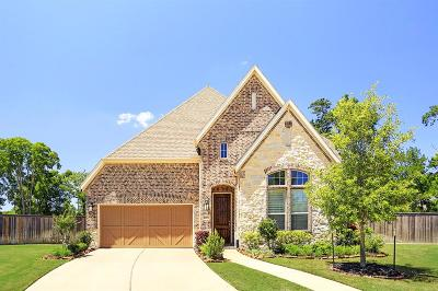 Sugar Land, Sugarland Single Family Home For Sale: 4907 Anthony Springs Lane