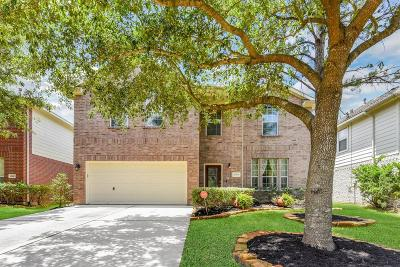Single Family Home For Sale: 10019 Adobe Drive