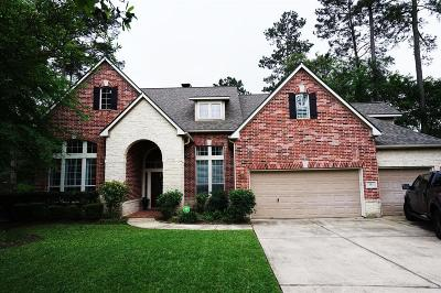 Spring Single Family Home For Sale: 91 N Dulcet Hollow Court