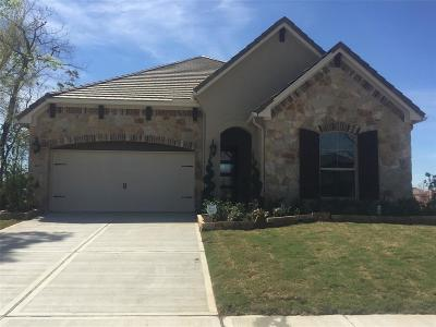 Sugar Land Single Family Home For Sale: 4627 Bellwood Springs