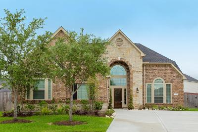 Sugar Land Single Family Home For Sale: 4130 Candle Cove Court