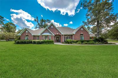 Magnolia Single Family Home For Sale: 9103 Breckenridge Drive