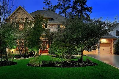 The Woodlands Single Family Home For Sale: 91 S Veilwood Circle
