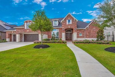 Fort Bend County Single Family Home For Sale: 28023 Starlight Harbor Lane