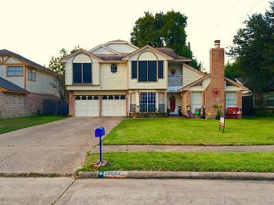 Katy Single Family Home For Sale: 20602 Broadsky Drive