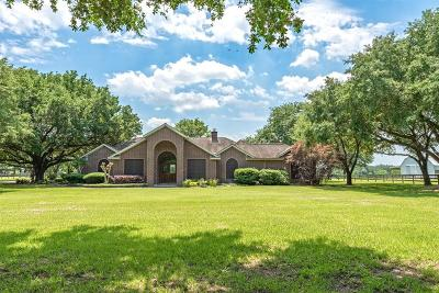 Tomball Single Family Home For Sale: 19203 Mueschke Road