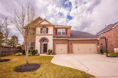Katy Single Family Home For Sale: 3622 Cameron Bluff Lane
