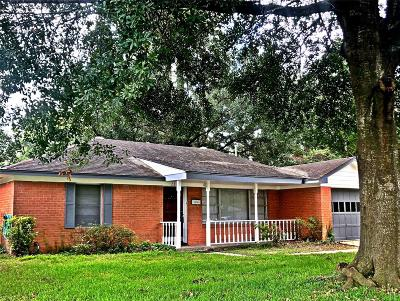 Houston Single Family Home For Sale: 2203 Wakefield Drive