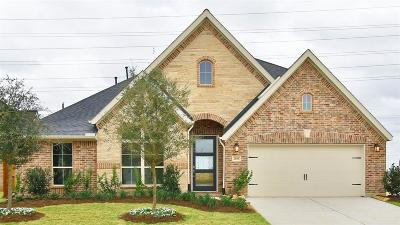 Katy Single Family Home For Sale: 2810 Acorn Way