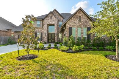 Tomball Single Family Home For Sale: 17315 Legend Brook Court