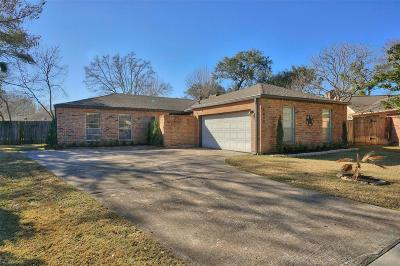 Houston Single Family Home For Sale: 2002 Round Lake Drive