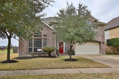 Houston Single Family Home For Sale: 10003 Palisade Lakes Drive