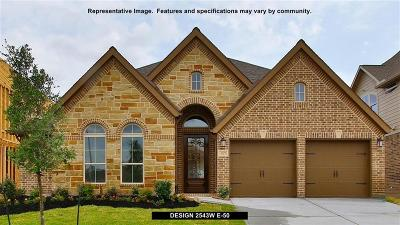 Fort Bend County Single Family Home For Sale: 23815 Via Viale Drive