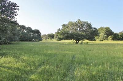 Austin County Country Home/Acreage For Sale: Koeppens Trail