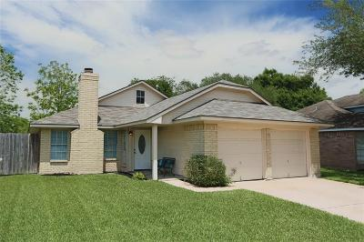 Harris County Single Family Home For Sale: 6507 Liberty Valley Drive