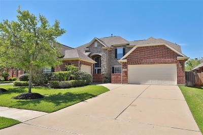 Katy Single Family Home For Sale: 25630 Tower Side Lane