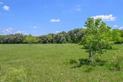 Colorado County Country Home/Acreage For Sale: Tract 3 Fourth Street