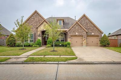 Single Family Home For Sale: 12102 Linden Walk Lane