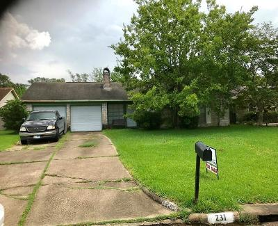 Single Family Home For Sale: 231 Holyhead Drive