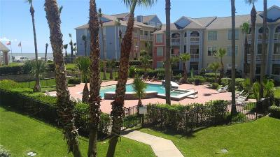 Galveston Condo/Townhouse For Sale: 7000 Seawall Boulevard #323