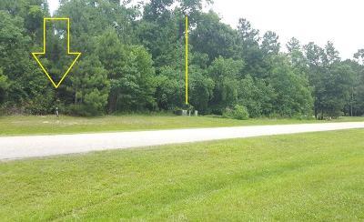 Spring Residential Lots & Land For Sale: 27422 Blue Cedar Lane