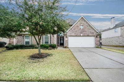 Tomball Single Family Home For Sale: 11415 Maple Falls Drive