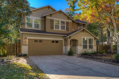 The Woodlands Single Family Home For Sale: 15 Forest Perch Place
