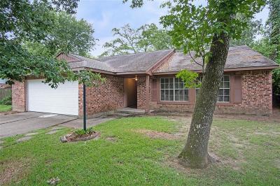 Houston Single Family Home For Sale: 3235 Villagedale Drive