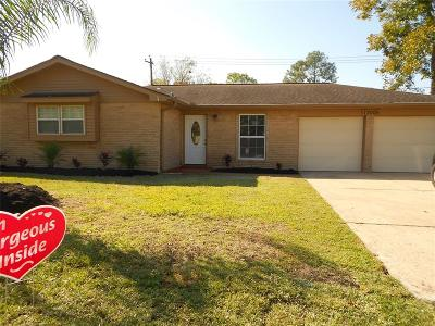Friendswood Single Family Home For Sale: 17006 David Glen Drive