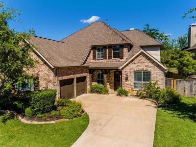 Missouri City Single Family Home For Sale: 3314 Saint Charles Court