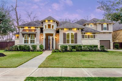 Sugar Land Single Family Home For Sale: 6131 Logan Creek Lane