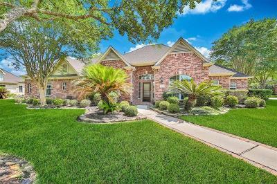 Houston Single Family Home For Sale: 64 Champion Villa Drive
