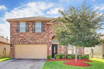 Houston Single Family Home For Sale: 14007 Long Meadow Drive