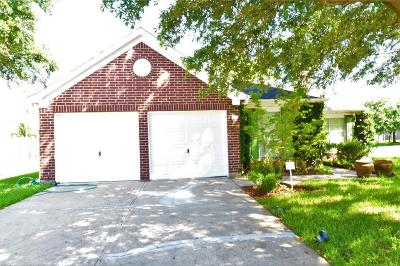 Houston Single Family Home For Sale: 12402 Shadow Dust Court