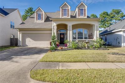 Tomball Single Family Home For Sale: 18923 Magnolia Arbor Lane