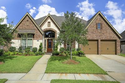 Shadow Creek Ranch Single Family Home For Sale: 13619 Starwreath