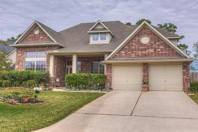Tomball Single Family Home For Sale: 12430 Morning Rain Drive